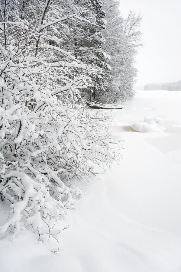 Vinterlandskap längs dold flodstrand för snö fotografering för bildbyråer