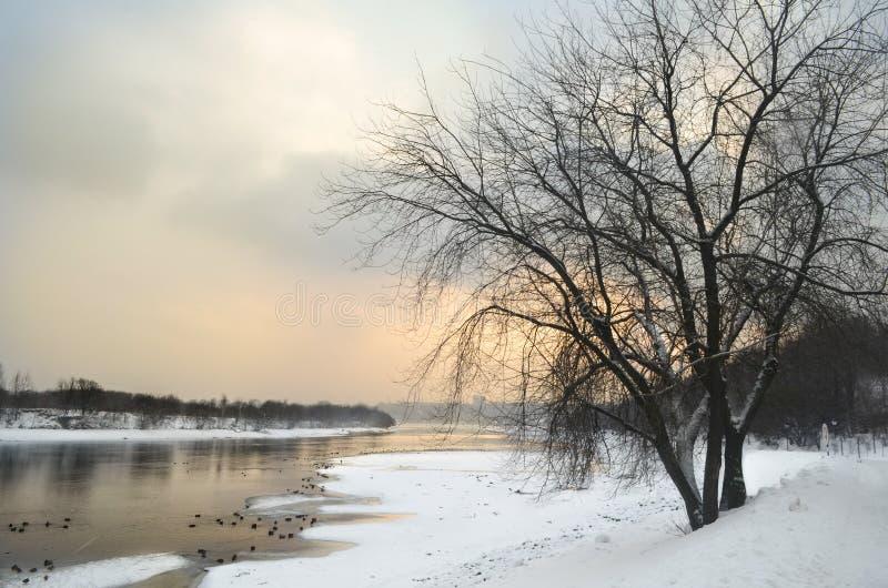 Vinterlandskap med floden på Ryssland arkivbilder