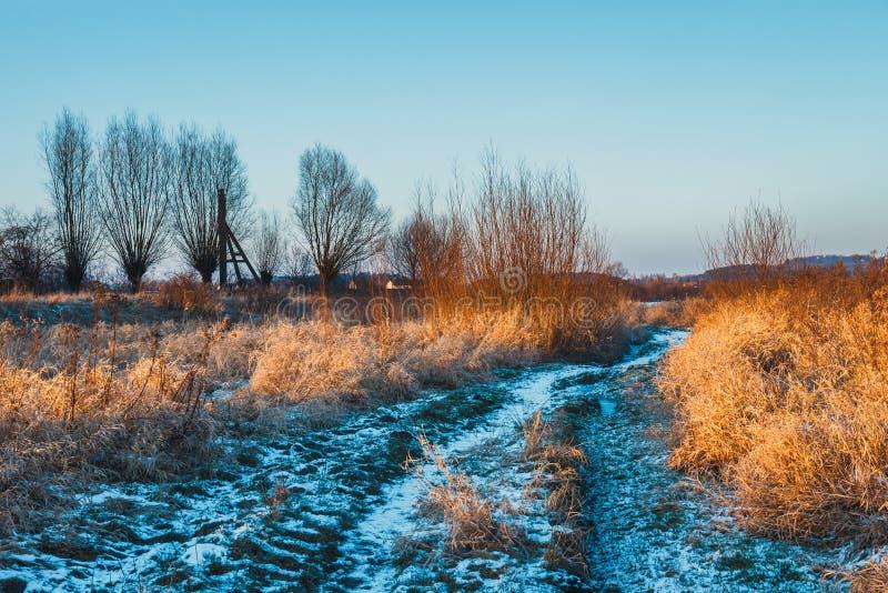Vinterlandskap med snö på jordningen royaltyfria bilder