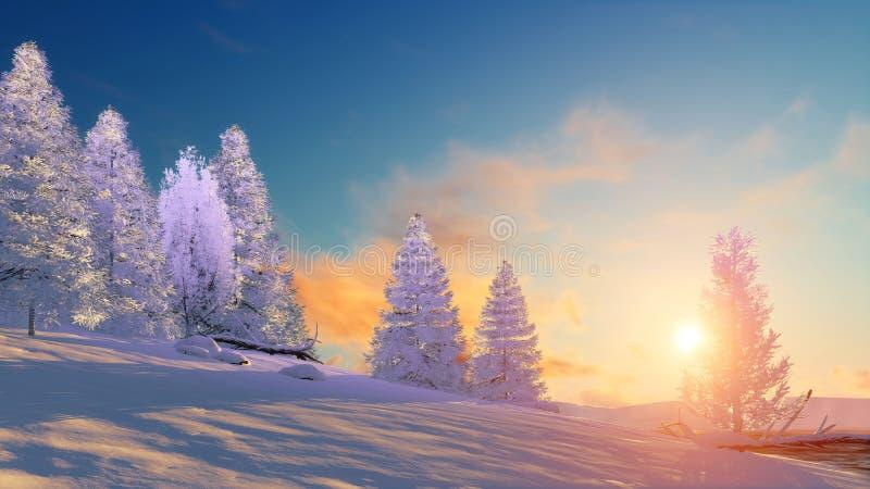 Vinterlandskap med snöig granar på solnedgången vektor illustrationer