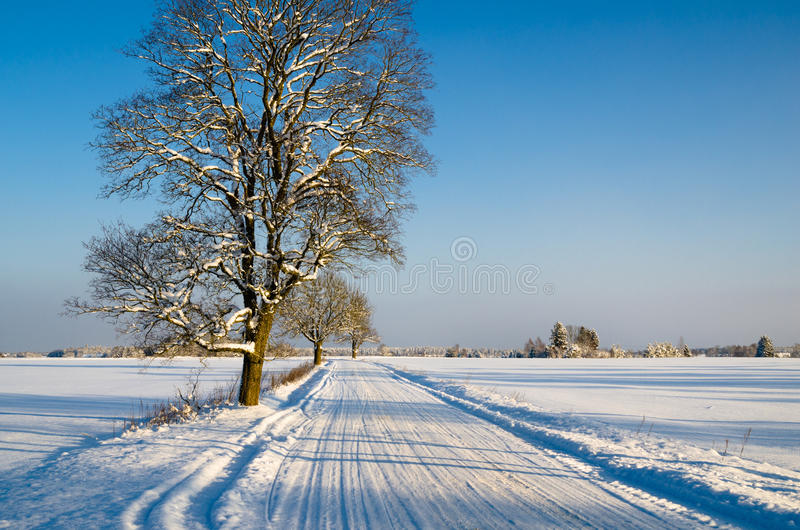 Vinterlandskap med vägen till en bygd arkivbilder