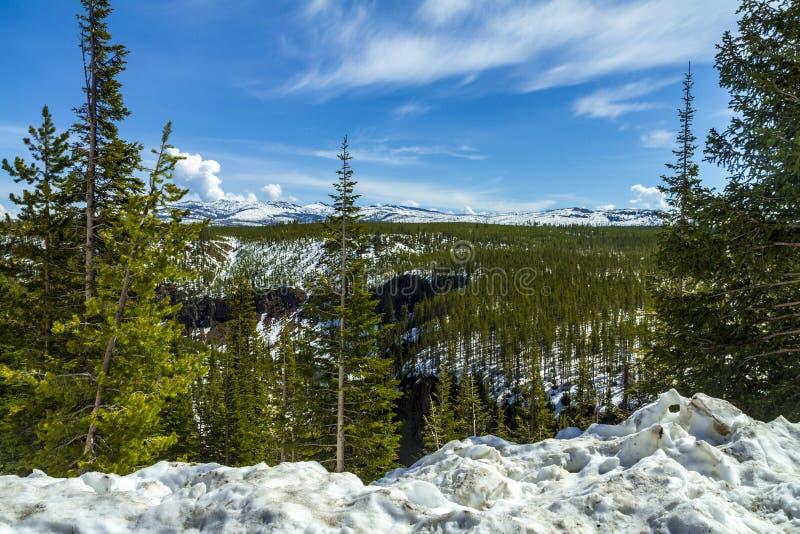 Vinterlandskap på Yellowstone arkivfoto
