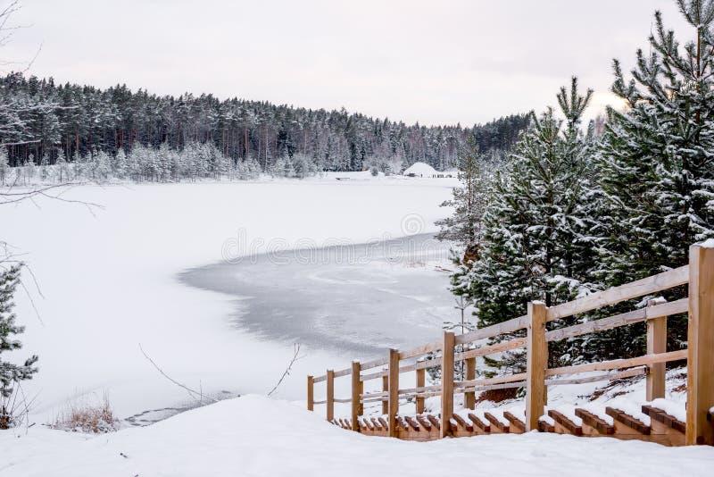 Vinterlandskap - trappa ner till den djupfrysta skogsjön royaltyfri foto
