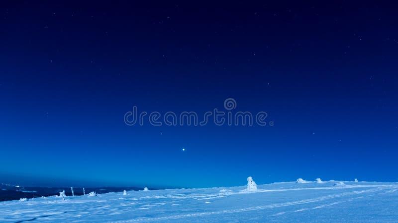 Vinterlandskap under natthimlen arkivfoto