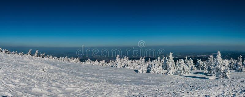 VinterlandskapBrocken nationalpark Harz arkivfoto