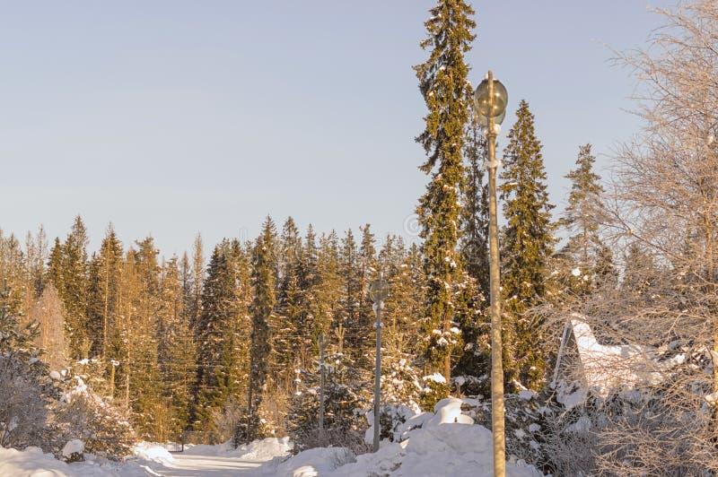 Vinterlandskapet är all dolt med snö och is, förkylningen arkivfoton