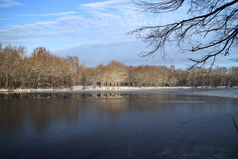 Vinterlandskapet floden är isbundet arkivfoto