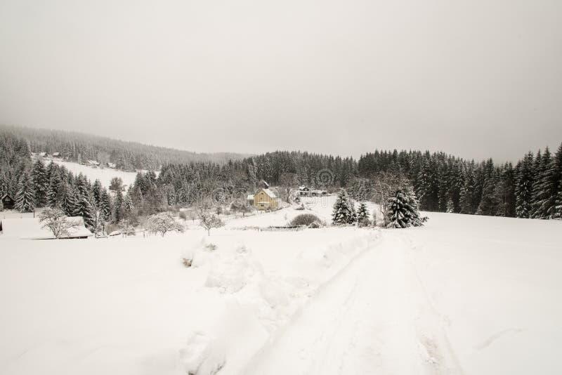 vinterlandskapet med få hus, snö täckte meadowss, kullar och skogen royaltyfri fotografi