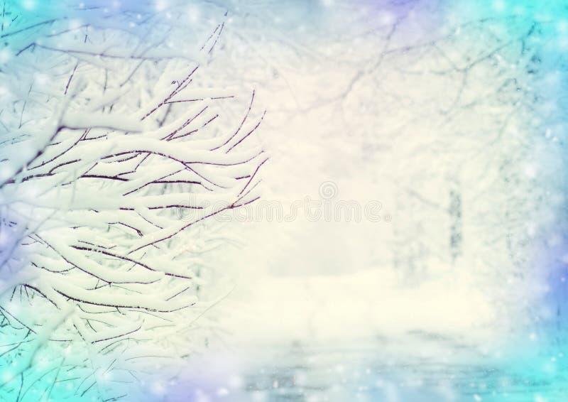 Vinterliggande med snow royaltyfri fotografi