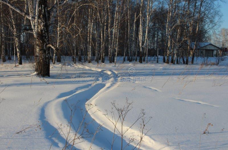 Vinterloppet den smala vägen till och med drivorna i vinter, den Siberian skogen, spårar av snövesslan på snö arkivbilder