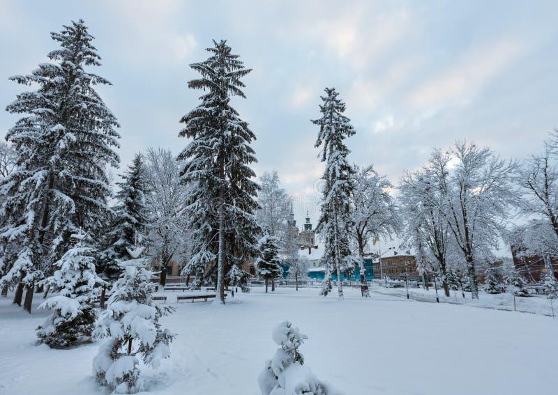 VinterLviv stad, Ukraina arkivbild