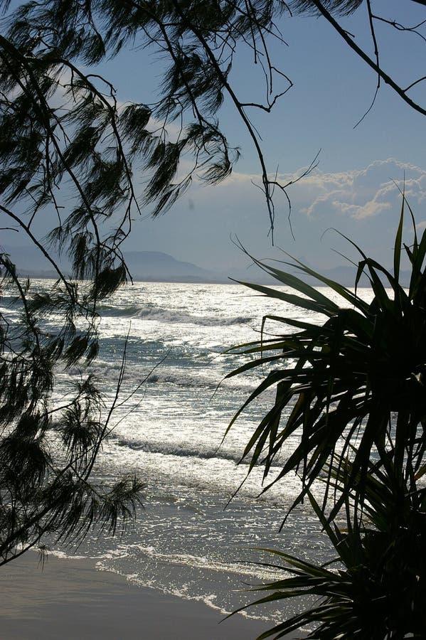 Vintermorgon Byron Bay arkivbilder
