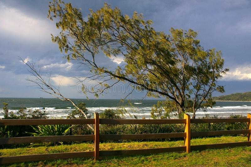 Vintermorgon Byron Bay II royaltyfria bilder
