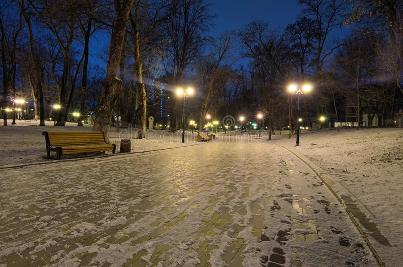 Vintermorgonen i Mariinskyen parkerar Att gå i vintern parkerar längs den tomma krökta gränden med bänkar och lyktor royaltyfri fotografi