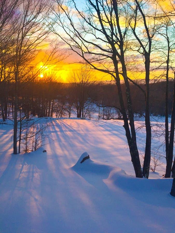 Vintermorgonsoluppgång i Catskills royaltyfria bilder