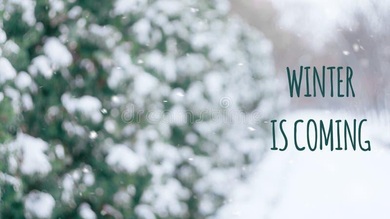 Vintern är kommande text med vinterplats som den snöig gränden i parkerar vinter för illustration för bakgrundsjuldesign royaltyfri fotografi