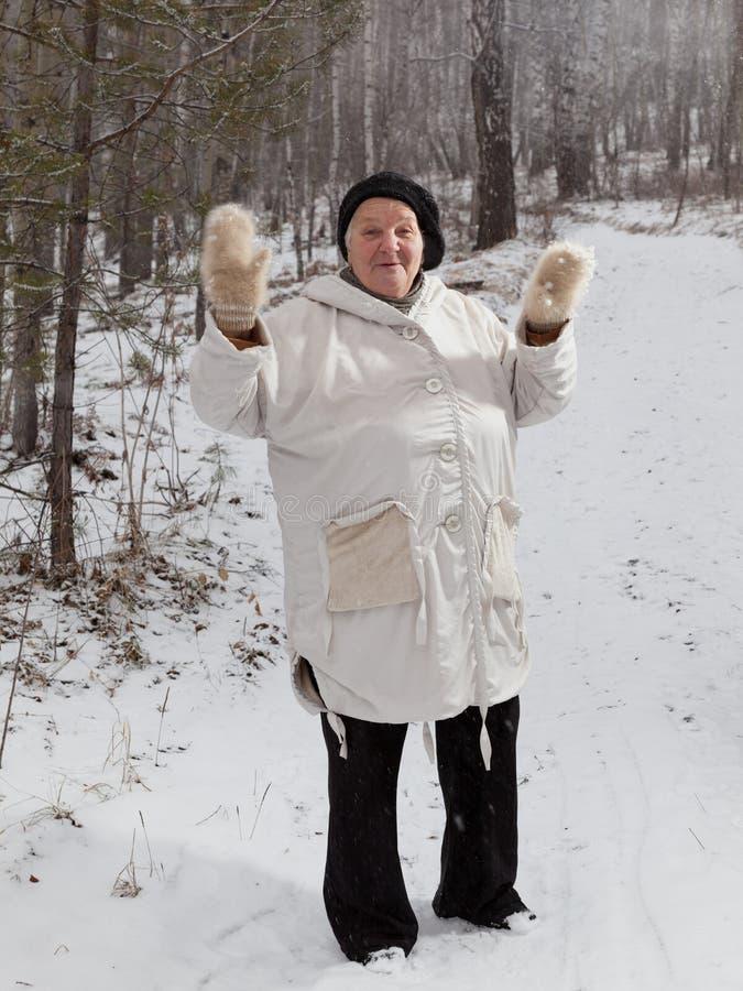 Vintern går fotografering för bildbyråer
