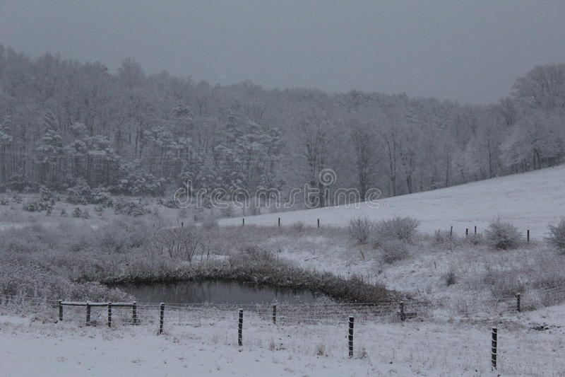 Vintern i baksidan betar arkivbilder