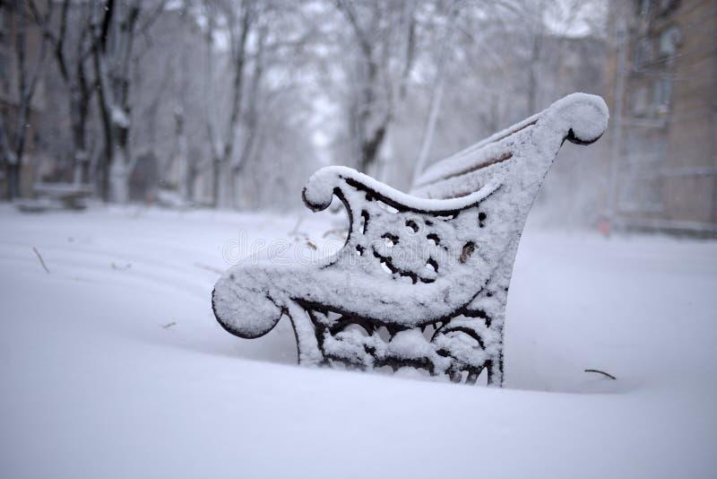Vintern landskap i parkera royaltyfria bilder