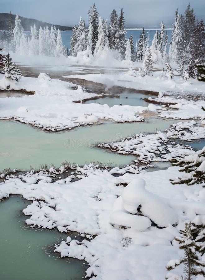 Vintern landskap, Yellowstone royaltyfria foton