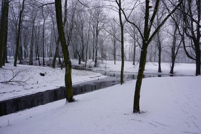 Vintern parkerar in 1 arkivbilder