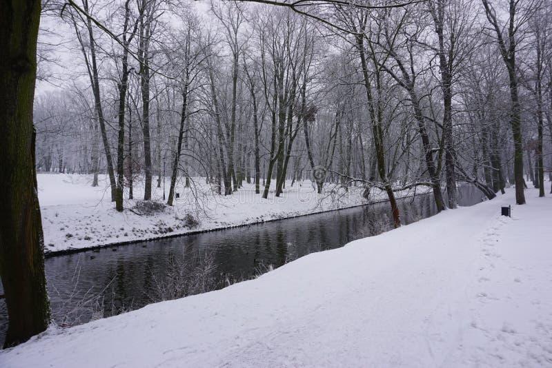 Vintern parkerar in 3 royaltyfri bild