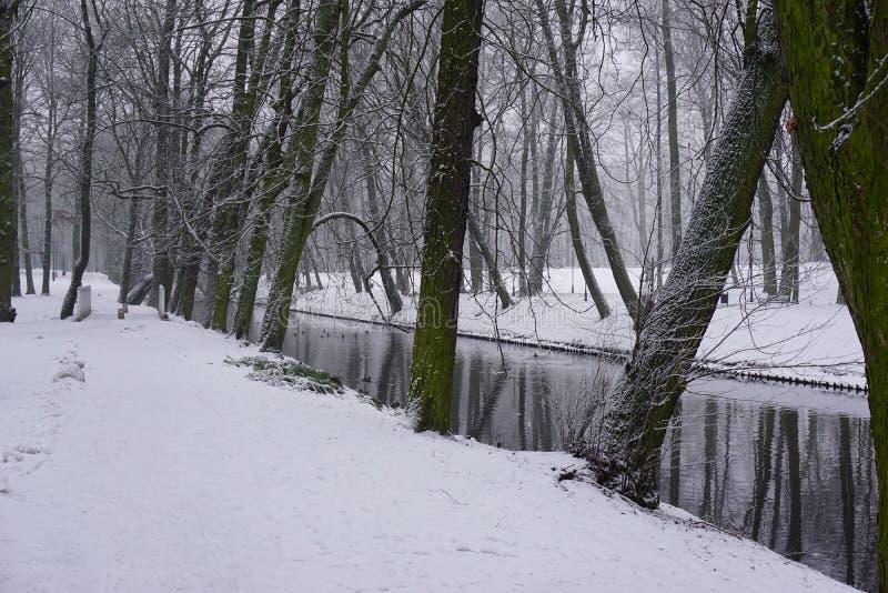 Vintern parkerar in 9 arkivfoton