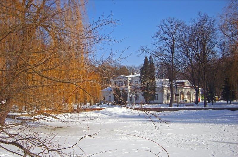 Vintern parkerar i lilla staden royaltyfri bild