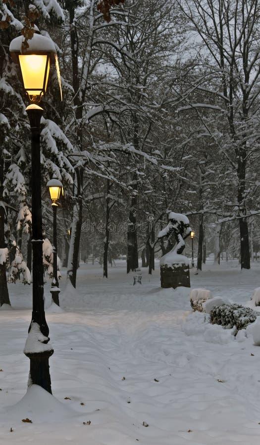Vintern parkerar med natt royaltyfria foton