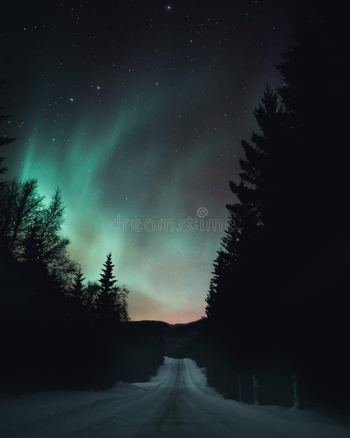 Vinternattväg med morgonrodnad arkivbilder