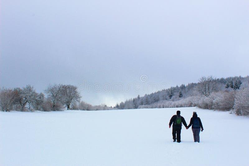 Vinternatursikt någonstans i Slovakien, royaltyfri bild