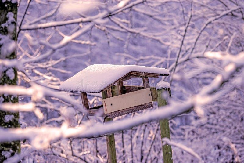 Vinterplats, fågelhus med snö arkivbilder
