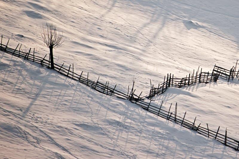Vinterplats med den trästaket och treen arkivfoton
