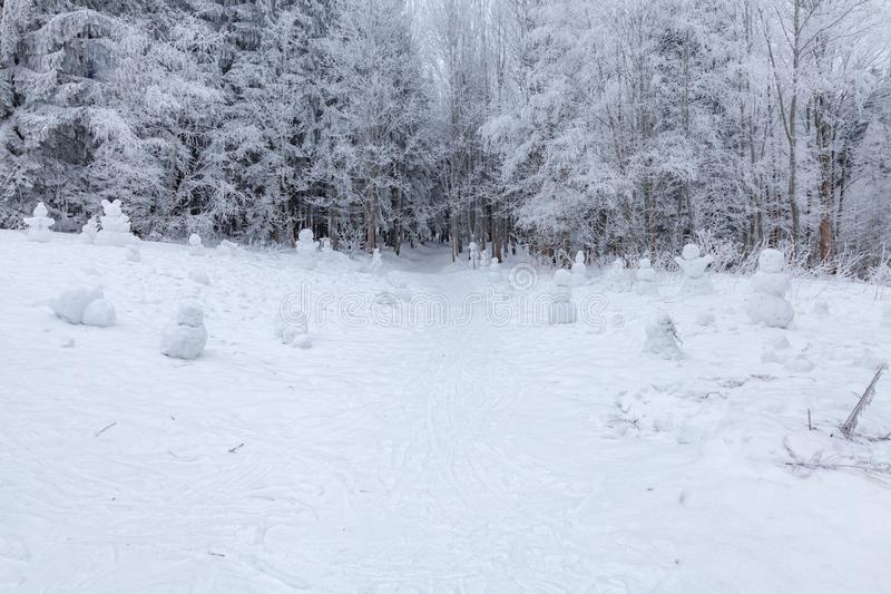 Vinterplatsen i vilar zon nära bänkar för en skog och snögubbear, skogväg royaltyfri bild