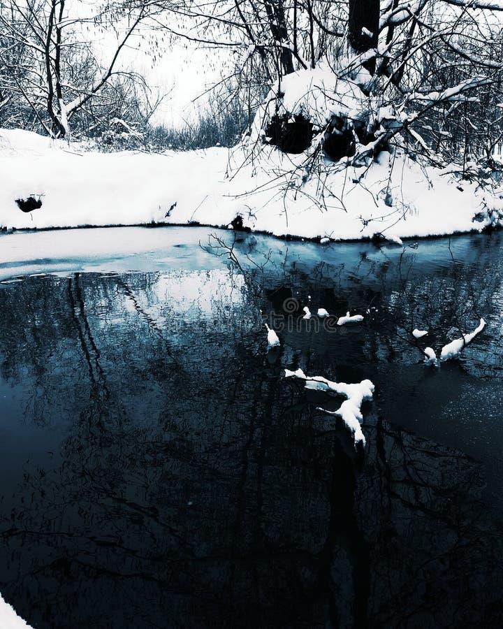 Vinterreflexioner fotografering för bildbyråer