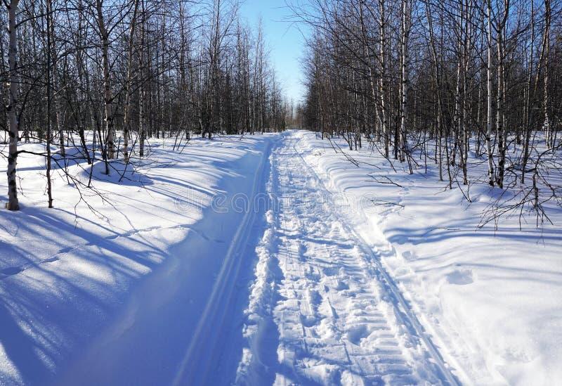 Vintersikt från snövesslaslinga i träna arkivfoto