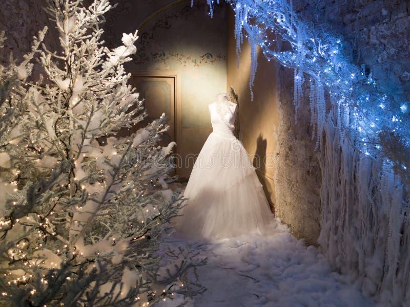 Vinterskärm av bröllopsklänningen fotografering för bildbyråer