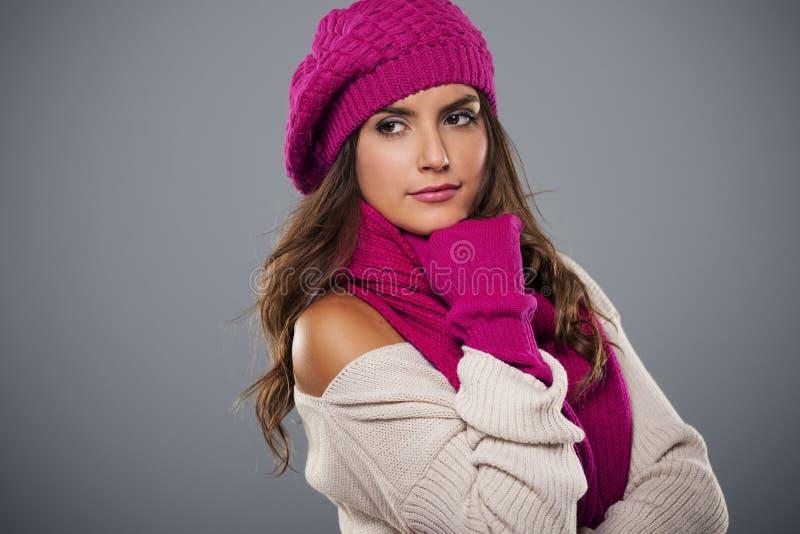 Vinterskönhet fotografering för bildbyråer