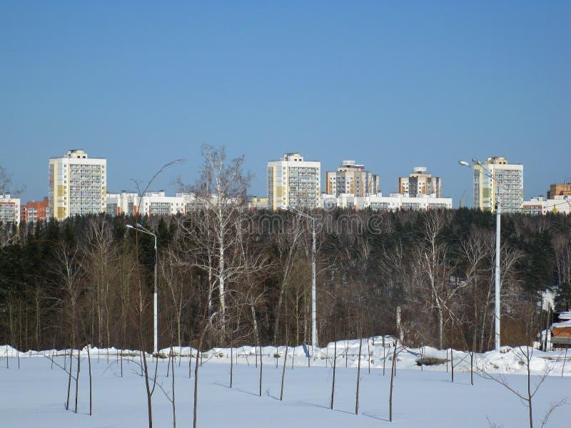 Vinterskog och stad royaltyfria bilder
