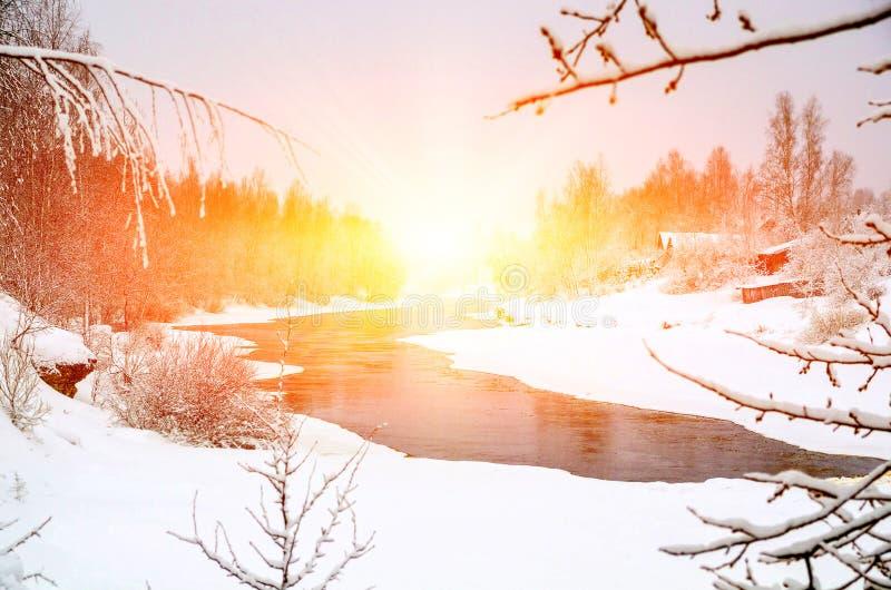 Vinterskog på floden på solnedgången Färgrikt landskap med snöig träd, fryst flod med reflexion i vatten fotografering för bildbyråer