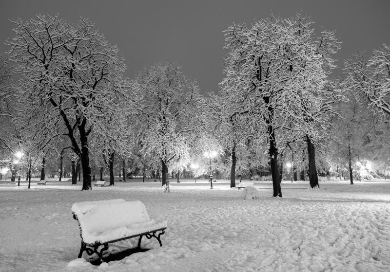 Vintersnö parkerar fotografering för bildbyråer