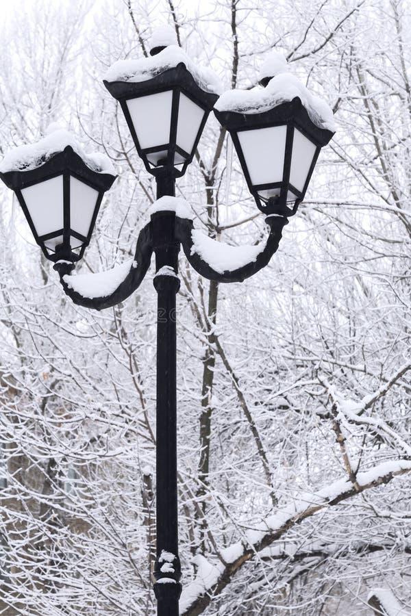 Vintersnöcityscape Tappninglykta i retro stil på en bakgrund av snöig träd i molnigt väder arkivbild