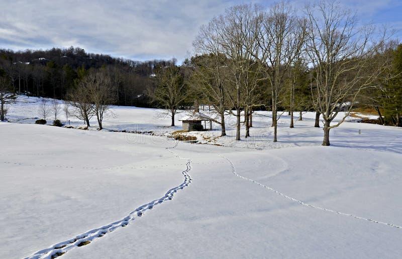 Vintersnölandskap arkivfoto