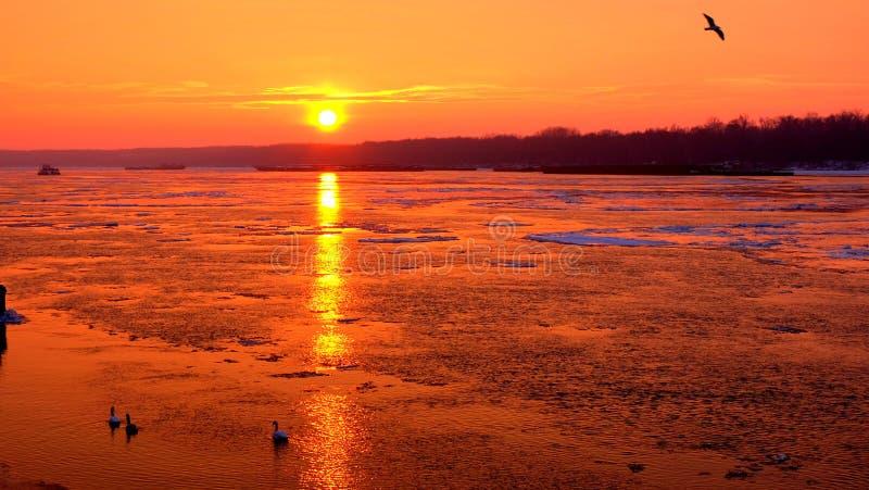 Vintersolnedgång över Danube River royaltyfri bild