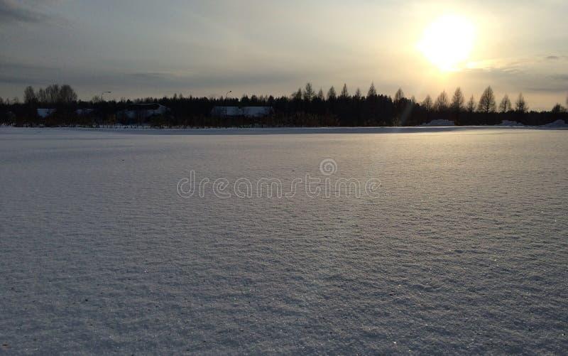 Vintersolnedgång över ett fält och träd arkivbilder