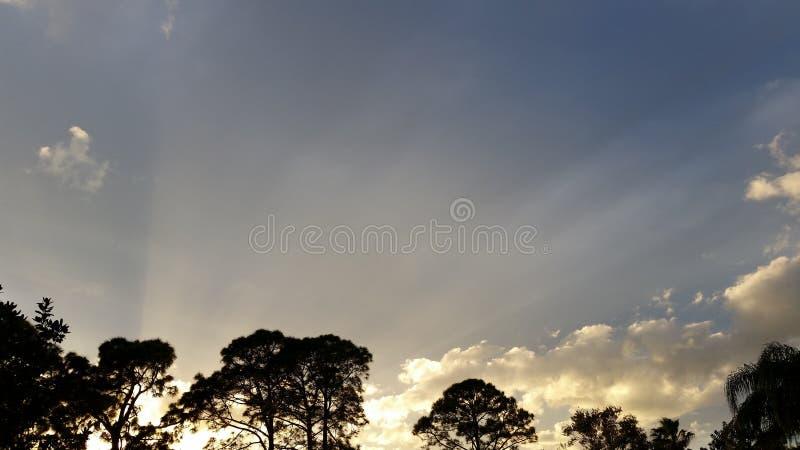 Vintersolnedgång royaltyfri foto