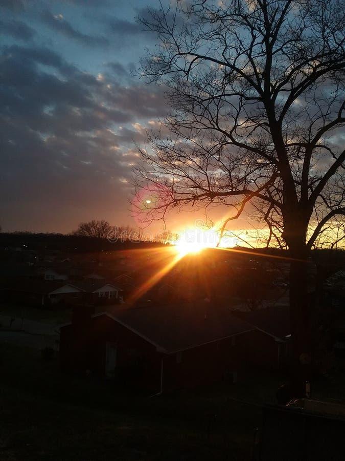 Vintersolnedgång som igenom ses ett träd arkivbilder