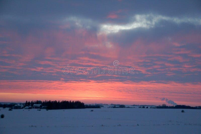 Vintersolnedgången över snö täckte fältet i sydliga minnesota royaltyfri bild