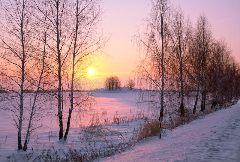 Vintersoluppgång royaltyfri bild