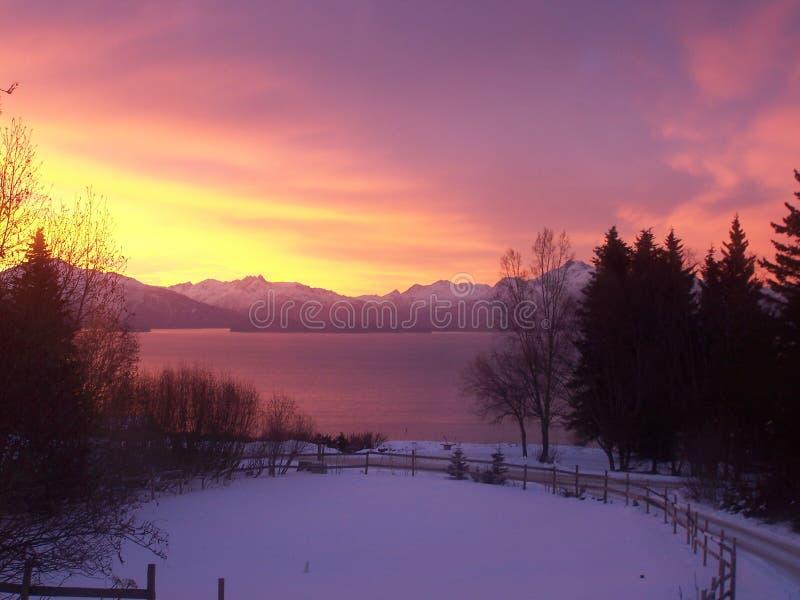 Vintersoluppgång på den Kachemak fjärden royaltyfria foton